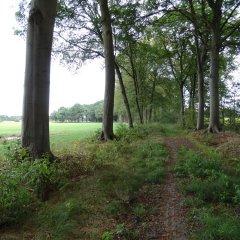 Kempens Landschap koopt 20 ha bos en open ruimte nabij kasteel van Noorderwijk