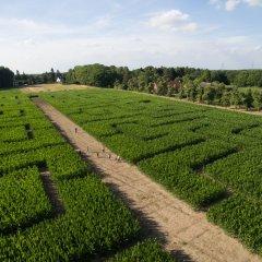 Op 15 augustus opent de vijfde maïsdoolhof!