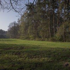 Beschermd stuk bos in Geel-Bel wordt publiek
