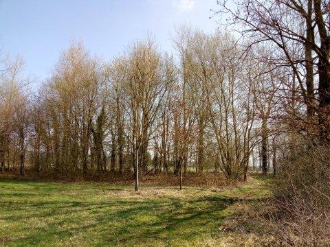 Helschot (3)