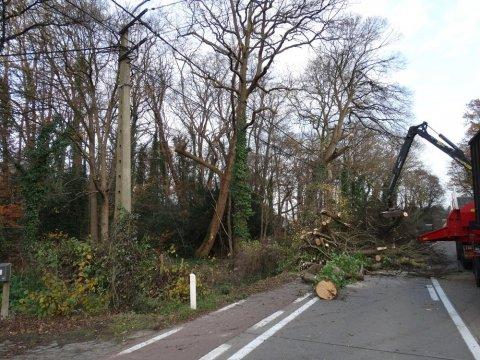 Park van Hof ter Borght krijgt nieuw elan
