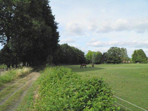 Groene long in Olen wordt opgewaardeerd