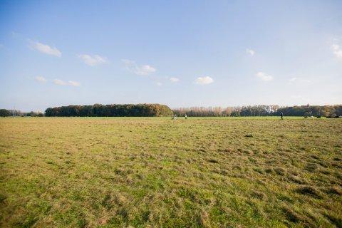 Kempens Landschap koopt open ruimte aan in Hove